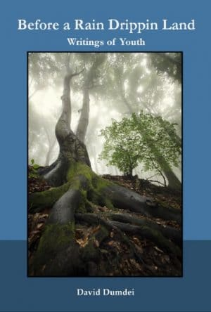 """A book of prose poetry, """"Before a Rain Drippin Land"""" by David Dumdei"""