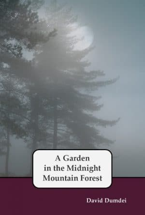 "A play, ""A Garden in the Midnight Mountain Forest"" by David Dumdei"