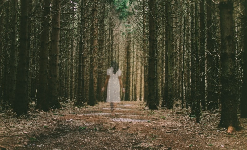 a woman, in white, walking in the forest of unforgiveness looking for God and forgiveness.